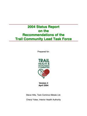 Program Strategy Report (2004)