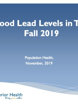 Fall 2019 Blood Lead Report