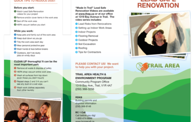 Lead Safe Renovation Brochure