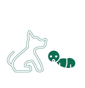 Pets and kids icon